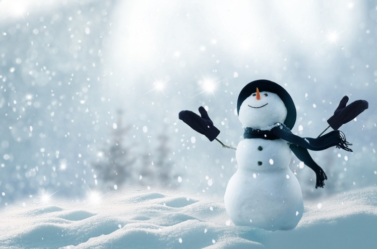 koning-winter